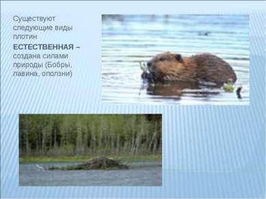 Существуют следующие виды плотин ЕСТЕСТВЕННАЯ – создана силами природы (Бобры...