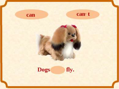 Dogs can, t fly.