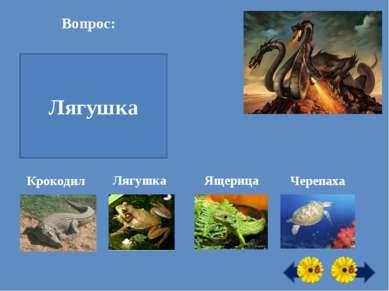 Вопрос: Кто может пить ногой? Лягушка Крокодил Лягушка Ящерица Черепаха