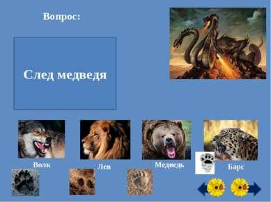 Вопрос: След какого хищного зверя похож на человеческий? След медведя Волк Ле...