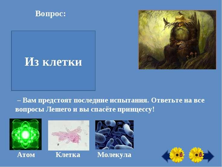 Вопрос: Из чего состоит всё живое на Земле? Из клетки Атом Клетка Молекула – ...
