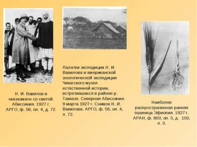 Н. И. Вавилов и «казазмач» со свитой. Абиссиния. 1927 г. АРГО, ф. 56, оп. 4, ...