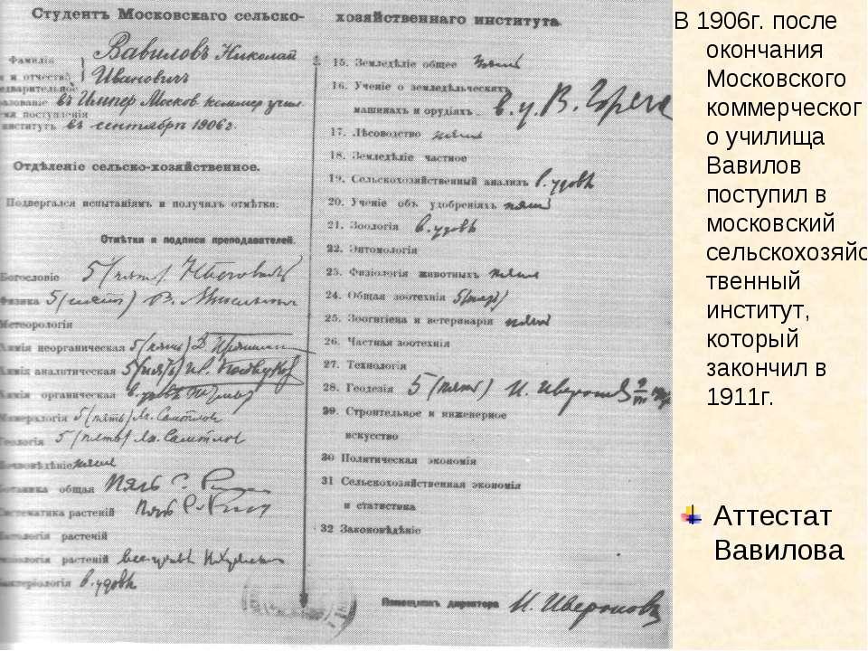 В 1906г. после окончания Московского коммерческого училища Вавилов поступил в...