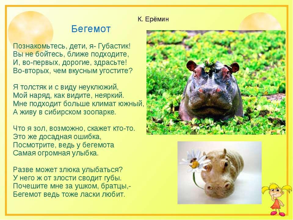 К. Ерёмин Бегемот Познакомьтесь, дети, я- Губастик! Вы не бойтесь, ближе подх...