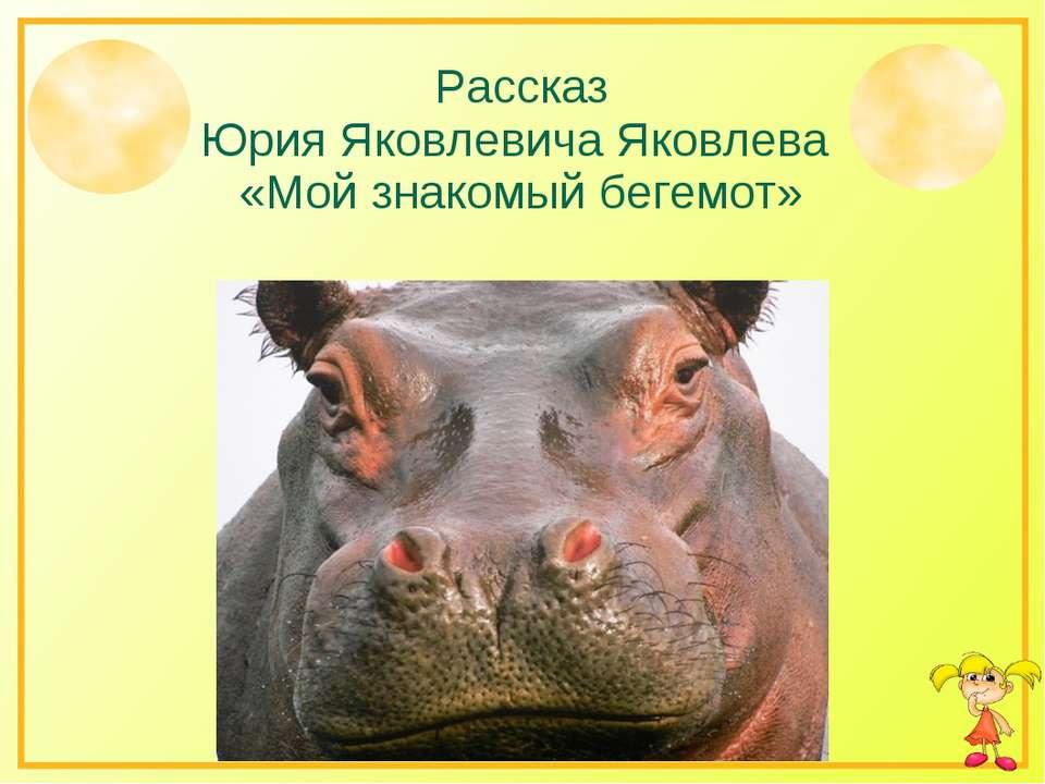 Рассказ Юрия Яковлевича Яковлева «Мой знакомый бегемот»