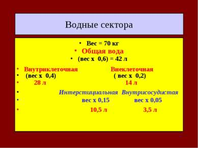 Водные сектора Вес = 70 кг Общая вода (вес х 0,6) = 42 л Внутриклеточная Внек...