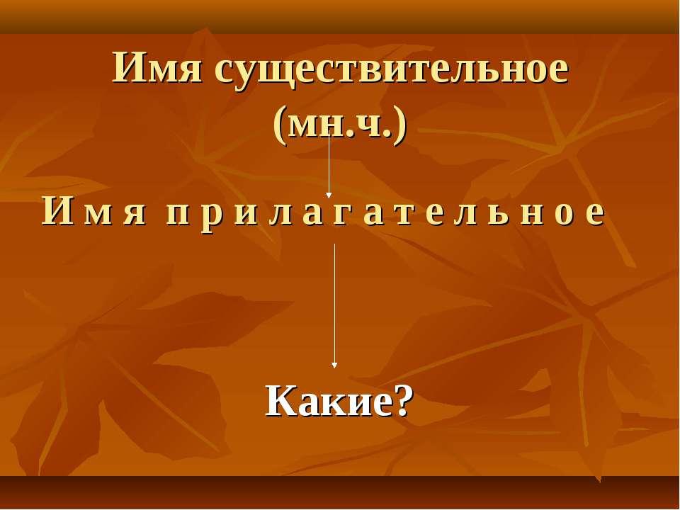 Имя существительное (мн.ч.) И м я п р и л а г а т е л ь н о е Какие?