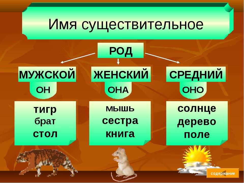Имя существительное РОД МУЖСКОЙ ЖЕНСКИЙ СРЕДНИЙ ОН ОНА ОНО тигр брат стол мыш...