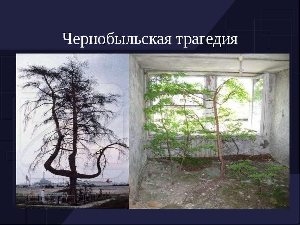 Чернобыльская трагедия