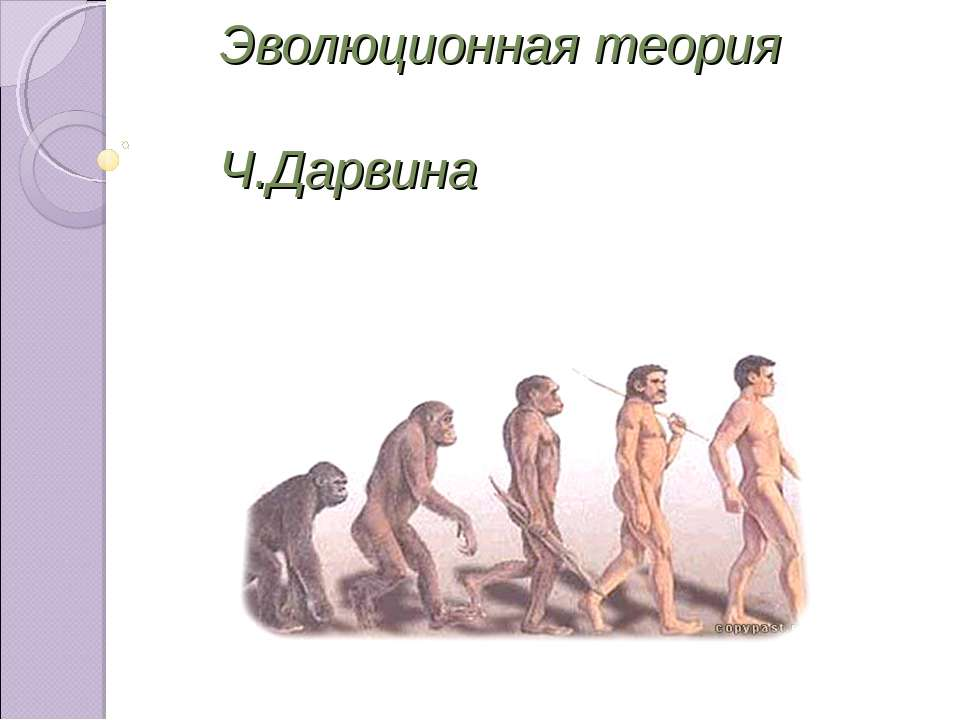 Эволюционная теория Ч.Дарвина