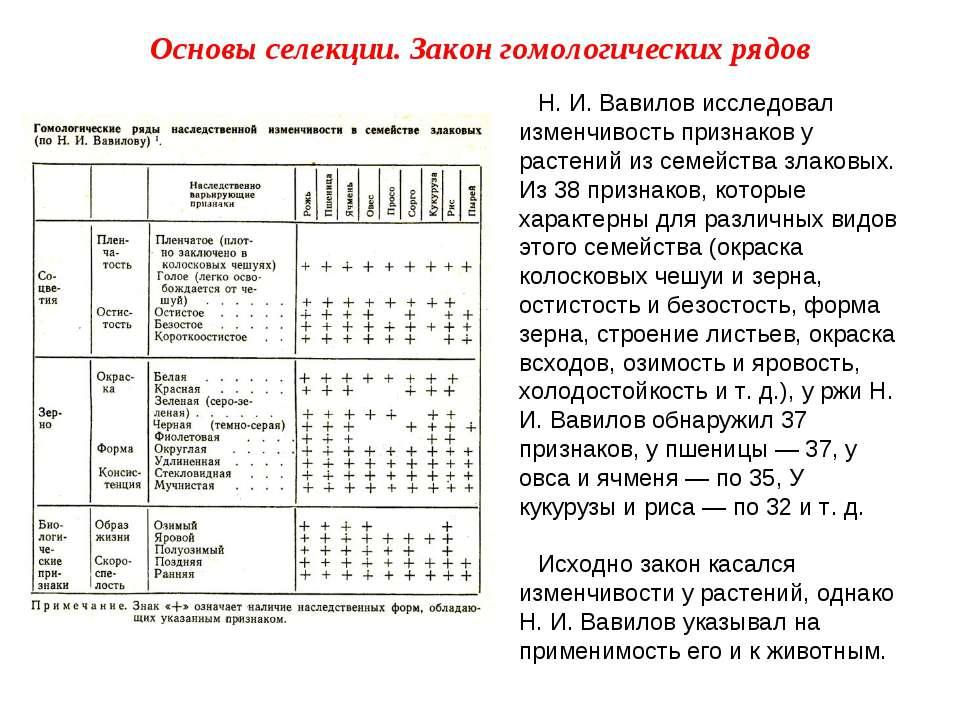 Н. И. Вавилов исследовал изменчивость признаков у растений из семейства злако...