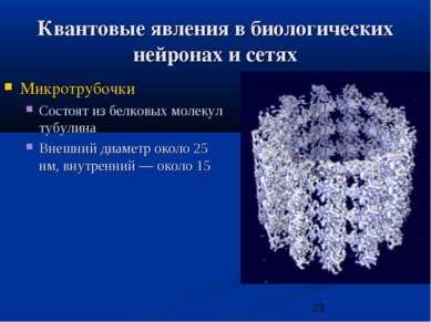 Квантовые явления в биологических нейронах и сетях Микротрубочки Состоят из б...