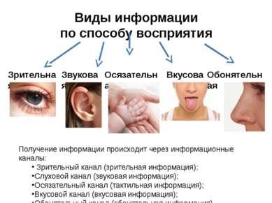 Виды информации по способу восприятия Зрительная Звуковая Вкусовая Обонятельн...