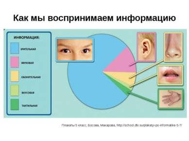 Как мы воспринимаем информацию Плакаты 5 класс, Босова, Макарова, http://scho...