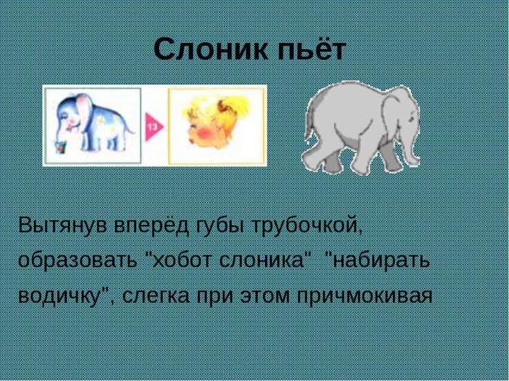 """Слоник пьёт Вытянув вперёд губы трубочкой, образовать """"хобот слоника"""" """"набира..."""