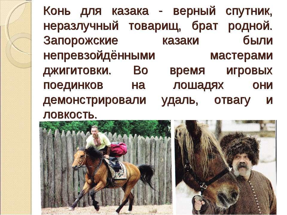 Конь для казака - верный спутник, неразлучный товарищ, брат родной. Запорожск...