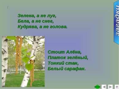 : Зелена, а не луг, Бела, а не снег, Кудрява, а не голова. Стоит Алёна, Плато...