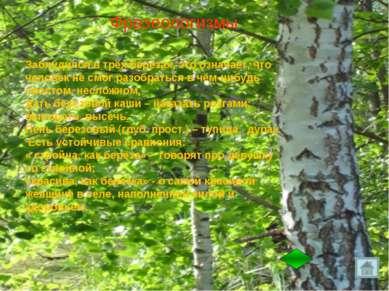 Фразеологизмы Заблудился в трёх берёзах,это означает, что человек не смог ра...