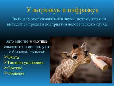 Ультразвук и инфразвук Зато многие животные слышат их и используют с большой ...