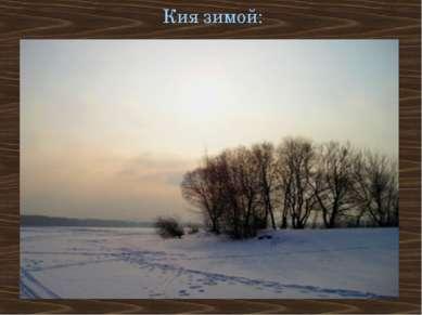 Кия зимой: