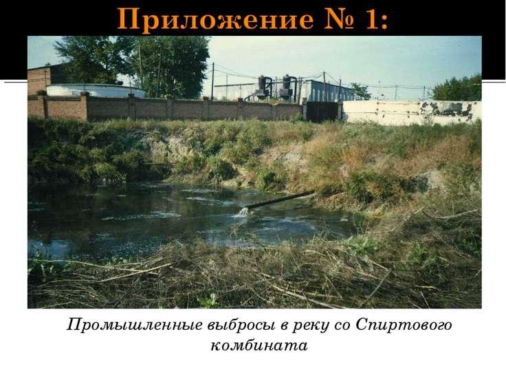 Промышленные выбросы в реку со Спиртового комбината