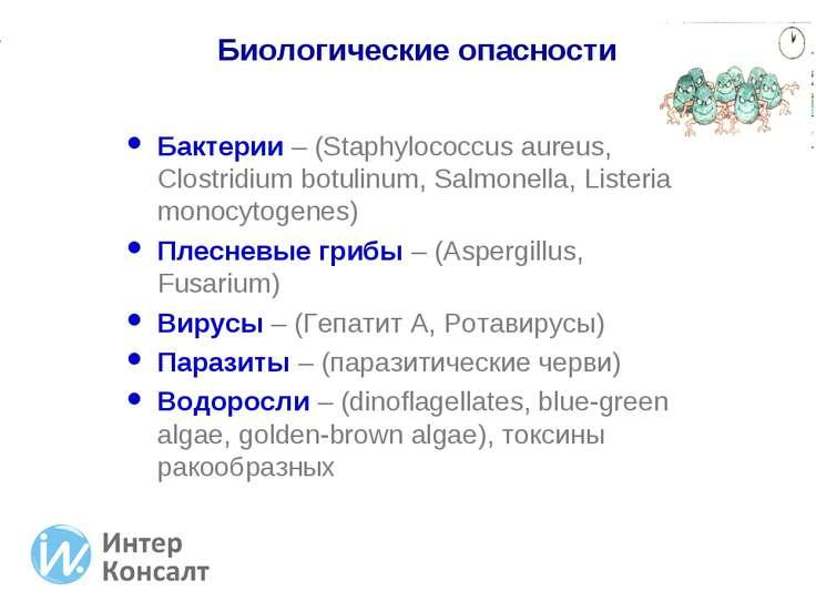 Бактерии – (Staphylococcus aureus, Clostridium botulinum, Salmonella, Listeri...