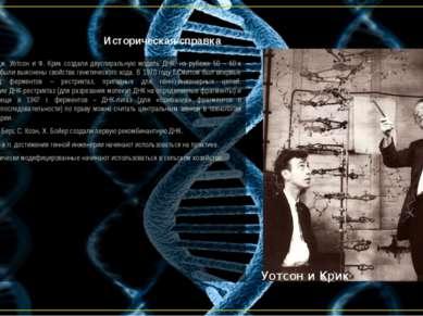 Историческая справка В 1953 году Дж. Уотсон и Ф. Крик создали двуспиральную м...