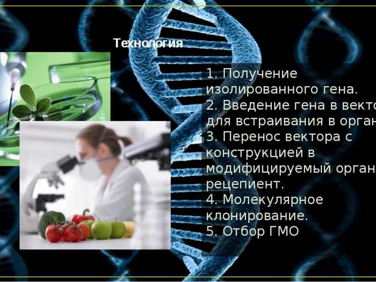 Технология 1. Получение изолированного гена. 2. Введение гена в вектор для вс...