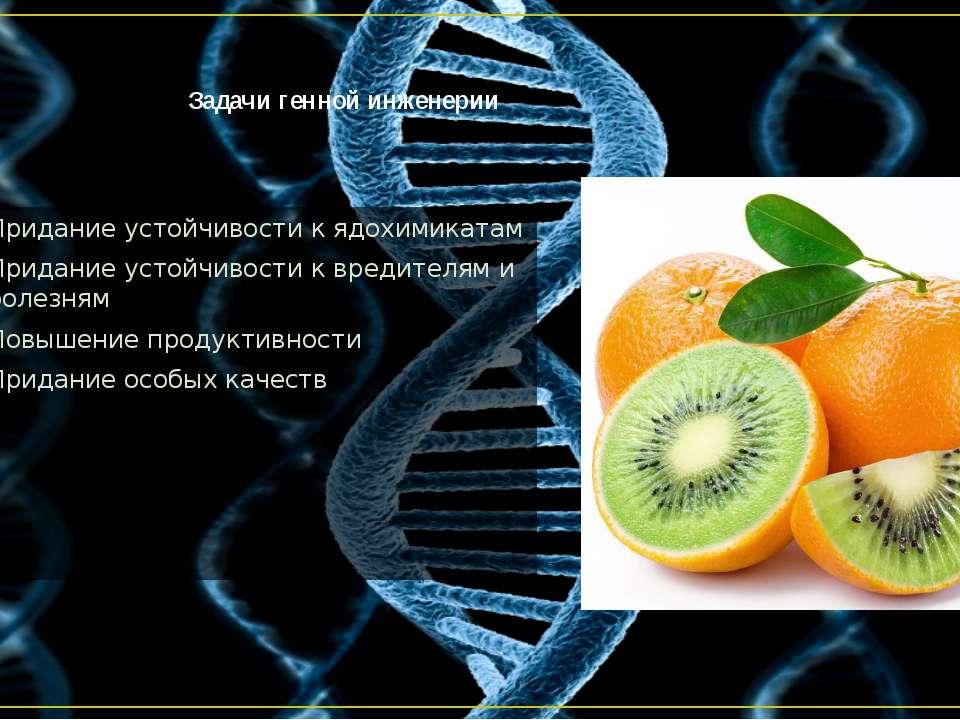 Задачи генной инженерии Придание устойчивости к ядохимикатам Придание устойчи...