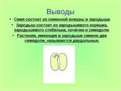 Выводы Семя состоит из семенной кожуры и зародыша Зародыш состоит из зародыше...