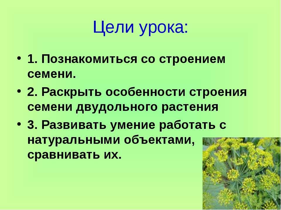 Цели урока: 1. Познакомиться со строением семени. 2. Раскрыть особенности стр...