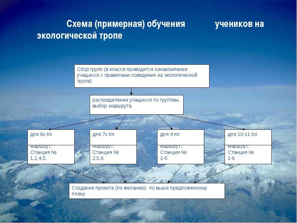 Схема (примерная) обучения учеников на экологической тропе