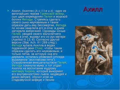 Ахилл Ахилл, Ахиллес (A c i l l e u z) · один из величайших героев Троянской ...