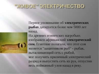 Первое упоминание об электрических рыбах датируется более чем 5000 лет наза...