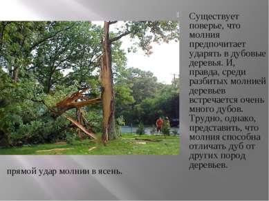 Существует поверье, что молния предпочитает ударять в дубовые деревья. И, пра...