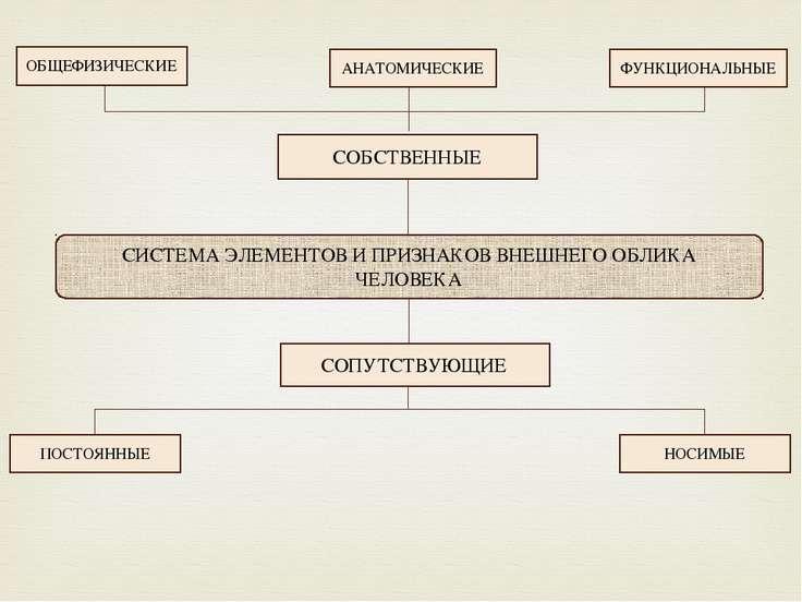 СИСТЕМА ЭЛЕМЕНТОВ И ПРИЗНАКОВ ВНЕШНЕГО ОБЛИКА ЧЕЛОВЕКА СОБСТВЕННЫЕ СОПУТСТВУЮ...