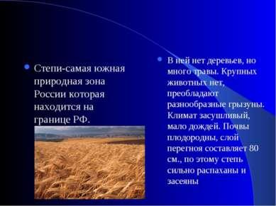 Степи-самая южная природная зона России которая находится на границе РФ. В не...