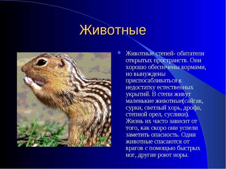 Животные Животные степей- обитатели открытых пространств. Они хорошо обеспече...