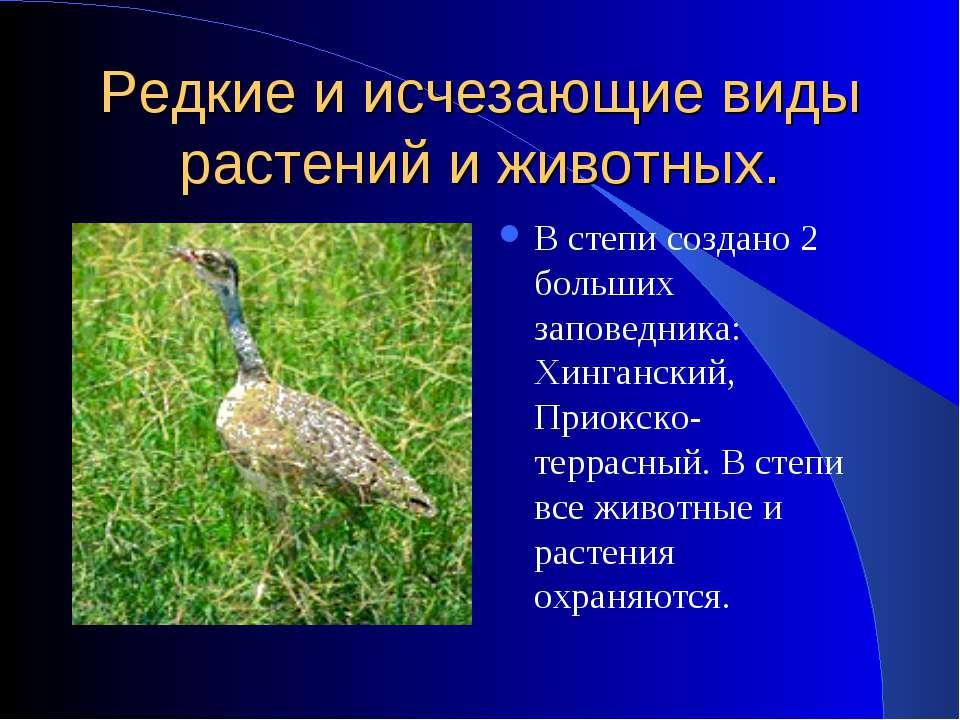 Редкие и исчезающие виды растений и животных. В степи создано 2 больших запов...