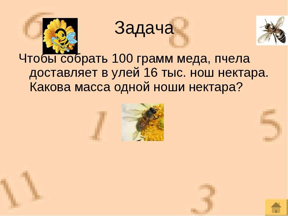 Чтобы собрать 100 грамм меда, пчела доставляет в улей 16 тыс. нош нектара. Ка...