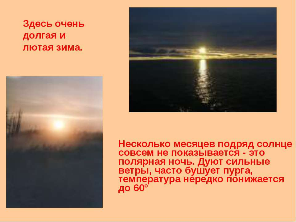 Несколько месяцев подряд солнце совсем не показывается - это полярная ночь. Д...