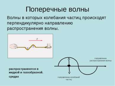 Поперечные волны Волны в которых колебания частиц происходят перпендикулярно ...