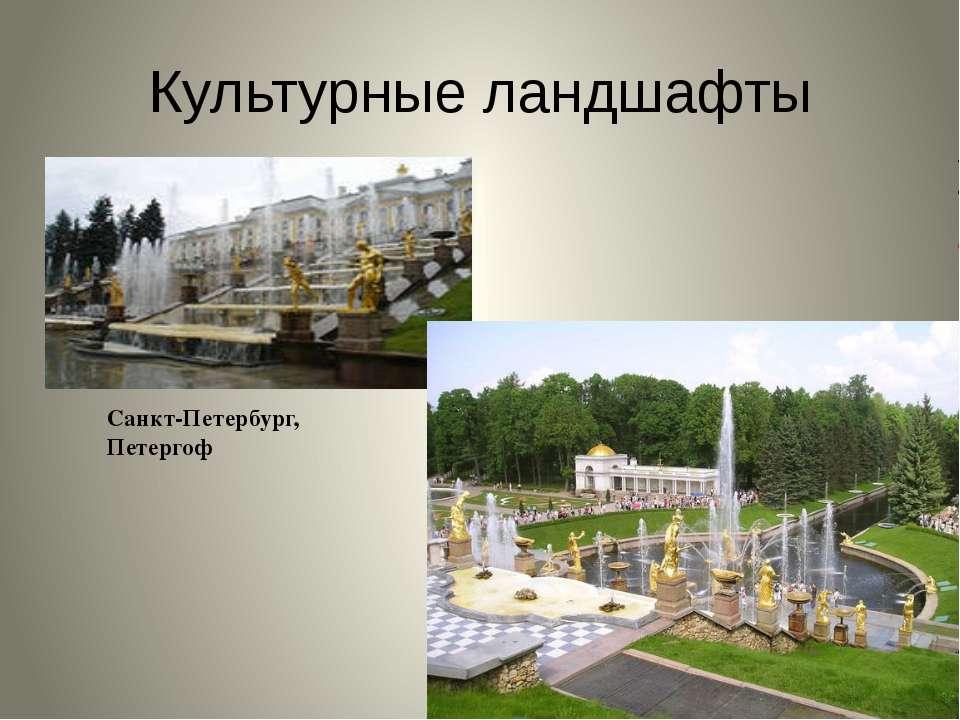 Культурные ландшафты Санкт-Петербург, Петергоф