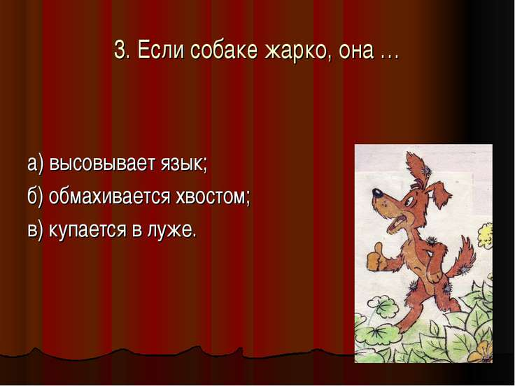 3. Если собаке жарко, она … а) высовывает язык; б) обмахивается хвостом; в) к...