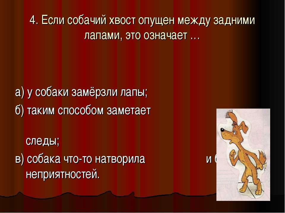 4. Если собачий хвост опущен между задними лапами, это означает … а) у собаки...