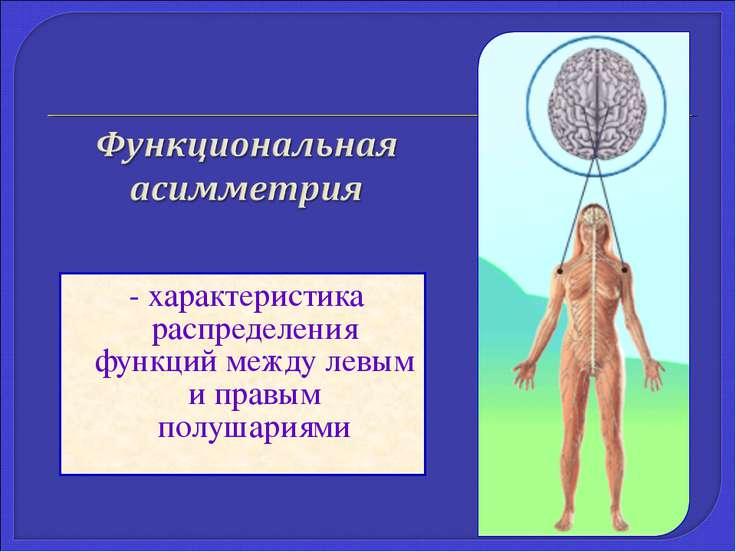 - характеристика распределения функций между левым и правым полушариями