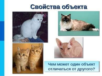 Свойства объекта Чем может один объект отличаться от другого?