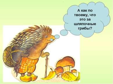 А как по твоему, что это за шляпочные грибы?