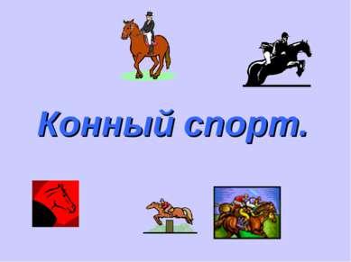 Конный спорт.