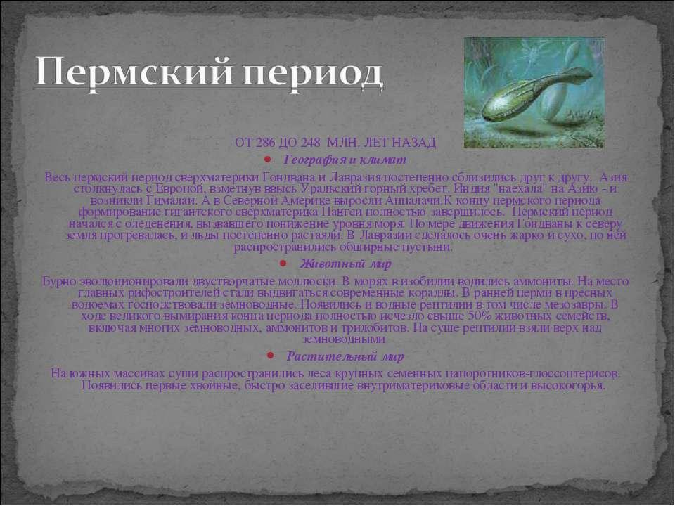 ОТ 286 ДО 248 МЛН. ЛЕТ НАЗАД География и климат Весь пермский период сверхма...